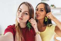 Female friends taking selfie whilst making breakfast in kitchen. stock photo