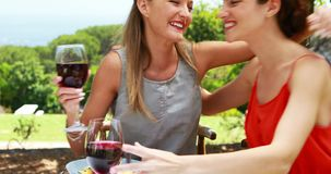 Female friends toasting glasses of red wine 4k. Female friends toasting glasses of red wine in outdoor restaurant 4k stock video footage