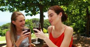 Female friends toasting glasses of red wine 4k. Female friends toasting glasses of red wine in outdoor restaurant 4k stock video