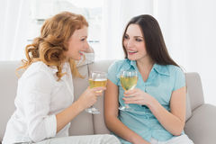 Female friends with wine glasses at home Stock Photos