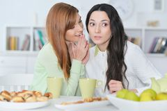Female friendsfemale friends sharing secret. Two smiling female friends sharing secret  sitting at table and drinking tea Royalty Free Stock Photo
