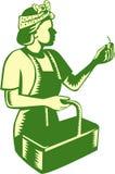 Female Fruit Picker Worker Basket Woodcut Royalty Free Stock Image
