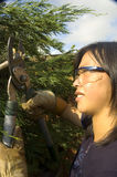 Female gardener. Female wearing safety eyeglasses cutting a branch with large pruners Stock Photos