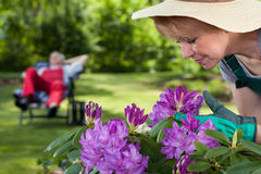 Female gardener caring about flowers Royalty Free Stock Photography