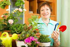 Female gardener caring for plants in pots Stock Image