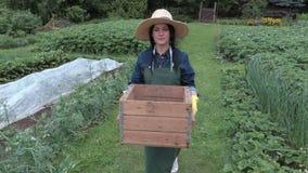 Female gardener carry box in the garden stock video