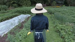 Female gardener checking the garden stock video footage