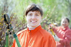 Female gardener cuts branches Stock Photography