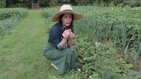 Female gardener find strawberry stock footage
