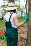Female gardener in garden Royalty Free Stock Images