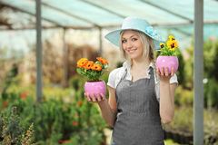 Female gardener holding flower pots in a garden. Young female gardener holding flower pots in a garden Royalty Free Stock Photos