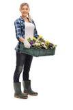 Female gardener holding flowers Royalty Free Stock Images