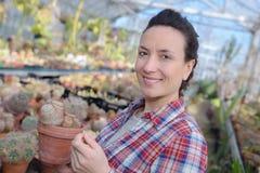 Female gardener holding seedling in greenhouse Stock Image