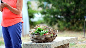 Female gardener. Stock Image