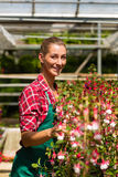 Female gardener in market garden or nursery Royalty Free Stock Image