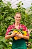 Female gardener in market garden or nursery Stock Photos