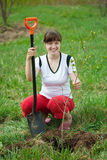Female gardener planting tree Royalty Free Stock Images