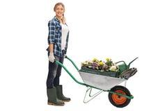 Female gardener pushing a wheelbarrow stock images