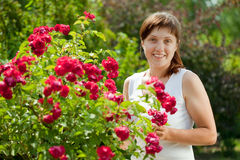 Female gardener in roses Royalty Free Stock Photography