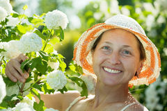 Female gardener in Roseum plant Royalty Free Stock Photography