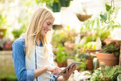 Female gardener using digital tablet at greenhouse. Young female gardener using digital tablet at greenhouse Royalty Free Stock Photography