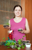 Female gardener with various seedlings Stock Photography