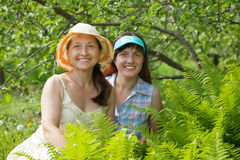 Female gardeners in fern plant Stock Images