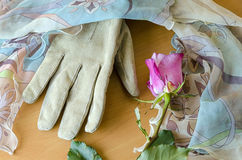 Female glove with a rose Stock Images