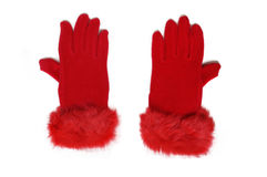 Female gloves stock photo