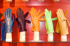 Female gloves. Elegant leather female gloves with fur Royalty Free Stock Image