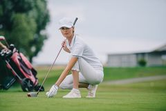 Female golf player in cap and golf glove putting ball on green lawn. At golf course royalty free stock images