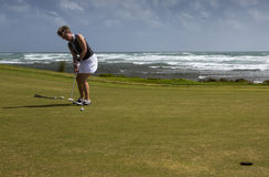 A female golf player putting on a green in caribbean. A beautiful day at the golf course. A female golf player performing a put. Photo taken on 2:nd January Royalty Free Stock Image