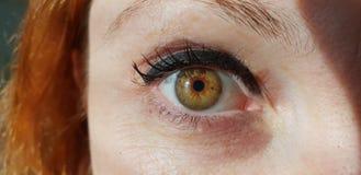 Female green eyes. A macro detail of Iride stock photo