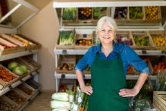 Woman working in small grocery store royalty free stock photo