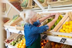 Woman working in small grocery store royalty free stock image