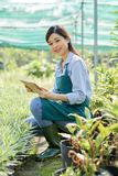 Female greenhouse worker royalty free stock photo