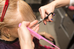 Female haircut with scissors Royalty Free Stock Photo