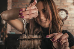Female hairdresser hairstyle hair of man Royalty Free Stock Photos