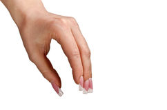 Female hand Royalty Free Stock Image