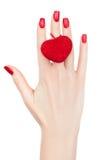 Female hand. Stock Photography