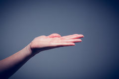 Female hand being held out Royalty Free Stock Photo