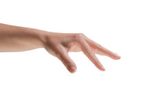 Female hand being held out Royalty Free Stock Image