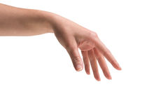 Female hand being held out Royalty Free Stock Images
