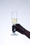 Female hand in black opera glove holding champagne glass Stock Photography