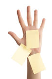 Female hand with blank notes Stock Photos