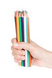 Female hand with a bunch of pencils Royalty Free Stock Photo