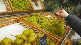 Female hand choosing grapes at the store stock footage