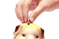 Female hand with coin and a piggy bank Royalty Free Stock Photos