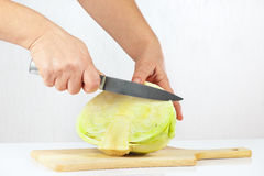 Female hand cuts cabbage Royalty Free Stock Photos