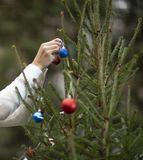 Female hand decorates the Christmas tree. Female hand decorates the green fir tree with Christmas balls. Outdoor. A woman is wearing a sweater royalty free stock image